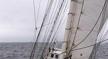 Sail Świnoujście 2010 – Sierpień pod żaglami