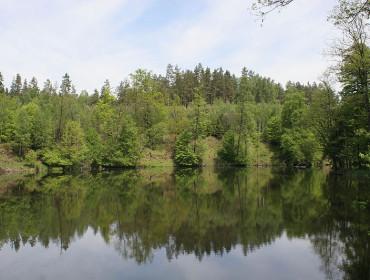 Rozlewisko Łyny w Redykajnach pod Olsztynem (fot Mazaki - wikipedia)