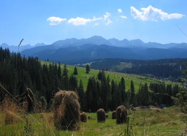 Tatry widok z Tarsówek (fot. Shalom Alechem - Wikipedia)