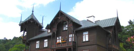 Witoldówka - Krynica (fot.Vindicator - wikipedia)