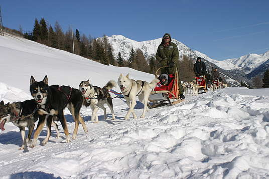 Husky Village w Arnodze pod Livigno