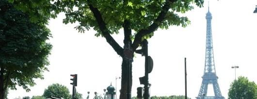 Velib to publiczny system wypożyczania rowerów w Paryżu