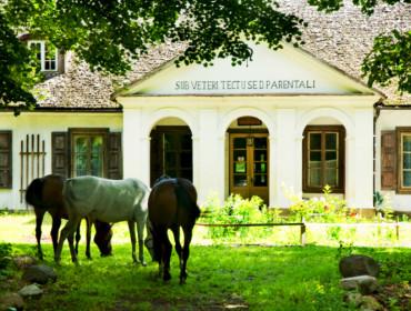Obecny właściciel dworku w Suchej kocha konie