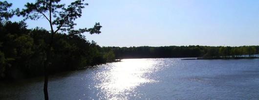Zalew Zemborzycki to największy zbiornik wodny w Lublinie. Źródło: Wikipedia