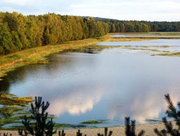 Stawy Echo w Roztoczańskim Parku Narodowym. Źródło: Wikipedia