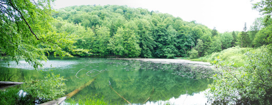 Śródleśne Jeziorka Duszatyńskie