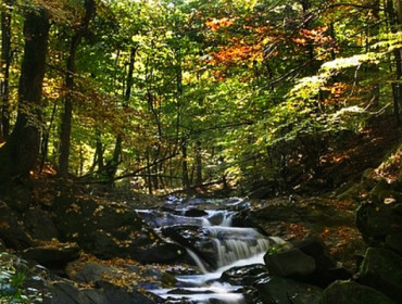 Wodospad Szepit na potoku Hylaty (fot. J.Szarek