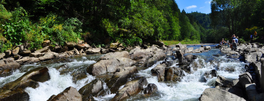 Rezerwat Sine Wiry w Bieszczadach (źródło: Wikipedia)
