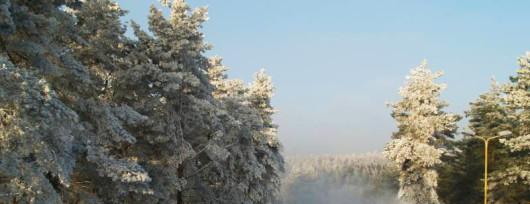 Białe szaleństwo na Szczecińskiej Gubałówce (źródło: www.gubalowka.com.pl)