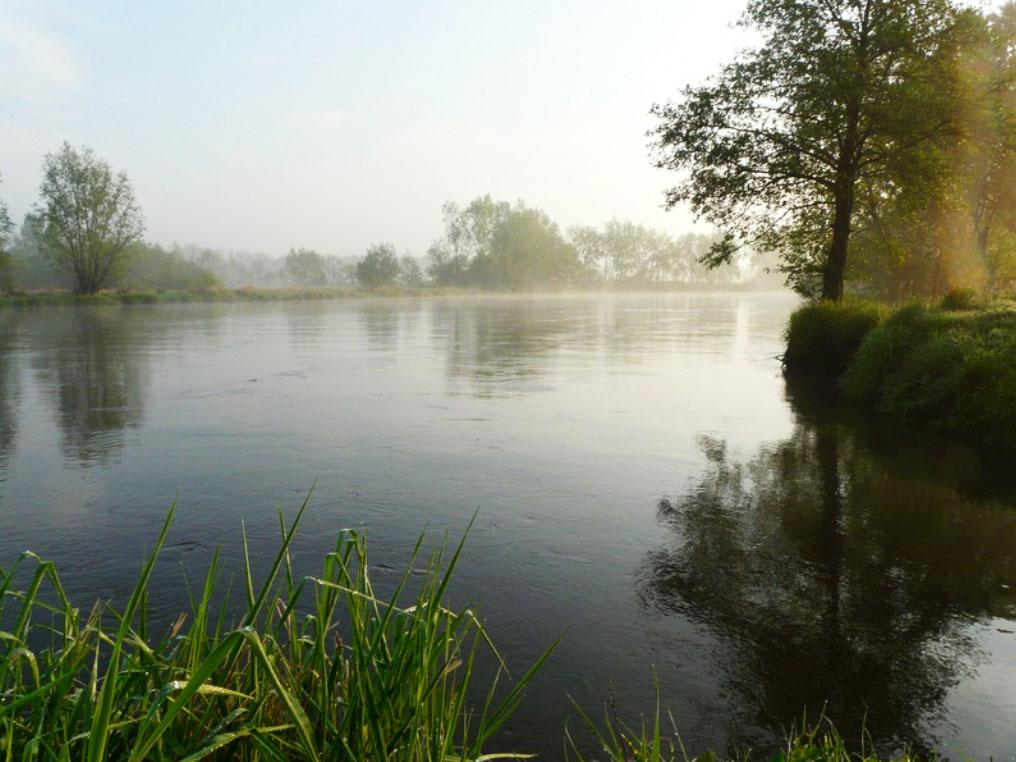 Piękna aura nad Pilicą w okolicy Białobrzegów (źródło: www.bialobrzegipowiat.pl)