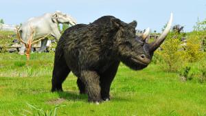 Nosorożec z epoki lodowcowej w Łeba Parku (źródło: www.lebapark.pl)