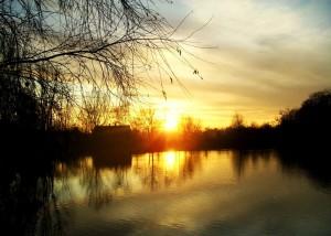 Park nad Jasieniem - widok na staw o zachodzie słońca (autor stevenlodz)