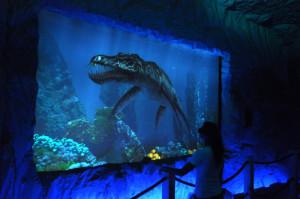 Wizyta w oceanarium w Baltowie mrozi krew w żyłach