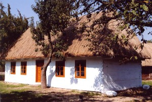 Chłopska chata przeniesiona z Mszadli, obecnie w Lipcach Reymontowskich