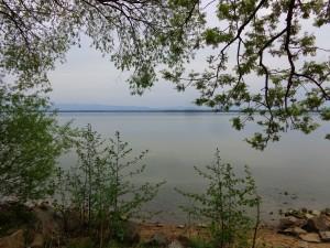 Nad Jeziorem Goczałkowickim jak w raju