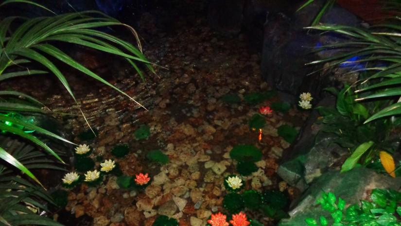 Podziemne źródło pełne kwiatów lotosu w pawilonie Malezji.