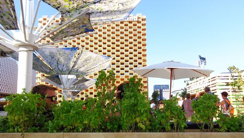 Wypoczynek na sofach z europalet, w cieniu parasoli z fotonadrukami kwiatami jabłoni. To lubimy!