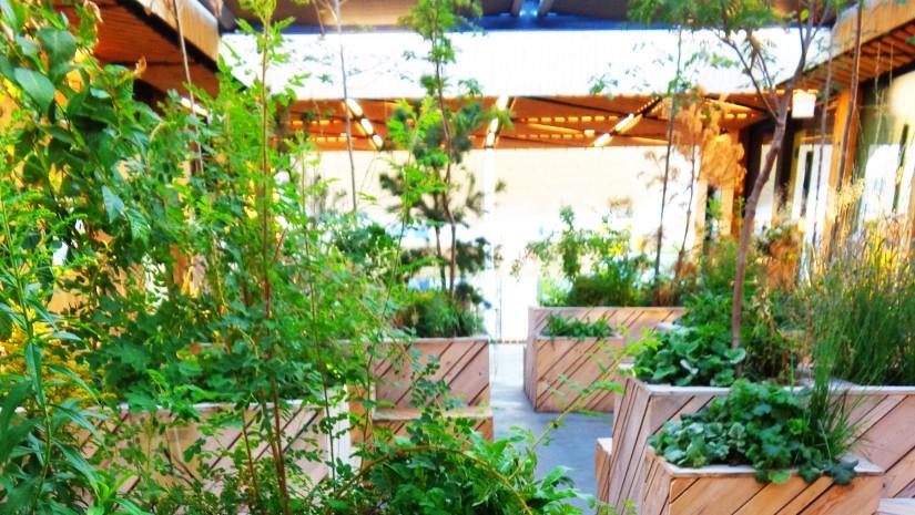 Na pierwszym piętrze w pawilonie Estonii można było usiąść na drewnianych ławkach pośród zieleni…