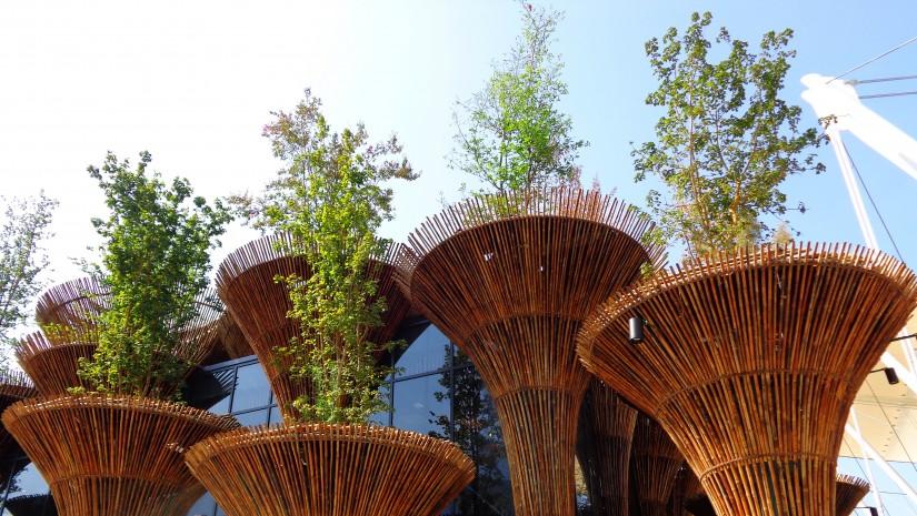 """Hasło Wietnamczyków na Expo w Mediolanie to """"Woda i kwiat lotosu"""". Lotos znany jest nie tylko ze swojego piękna i idealnego kształtu, do którego nawiązują bambusowe """"kielichy"""". Roślina rośnie w błocie, w stojących zbiornikach wodnych i ma właściwości oczyszczające wodę. Czyli ekologicznie doskonała."""
