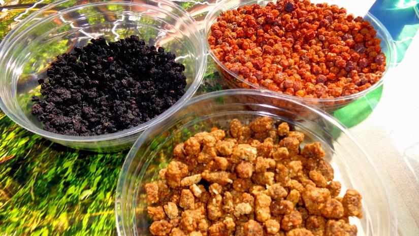 Można było także spróbować suszonych jagód, jarzębiny i… owoców morwy!