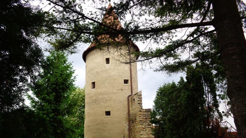 Baszta Szkolna jest jedną z 11 warownych wieży w Bardejowie. Pozostałe baszty to Gruba, Praszna, Duża, Czerwona, Dolna, Prawo-kątowa, Renesansowa, Archiwa, Poligonalna i Klasztorna.