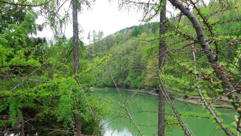 Jezioro Ton to dawne wyrobisko pobliskiej cementowni w Goleszowie.