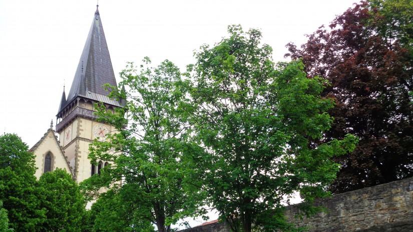 """Najcenniejszym zabytkiem Bardiowa jest gotycki kościół Św. Idziego, po słowacku """"dom sv. Egidia"""". Początkowo, w miejscu bazyliki, której budowę rozpoczęto w 2. poł. XIV w., zaś ukończono w 1518 r., znajdował się dawny klasztor cystersów."""