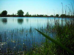 Żwirownia w Brzegach niedaleko Wieliczki jest kąpieliskiem niestrzeżonym, jednak atrakcyjnym z racji swych walorów przyrodniczych (źródło www.wikimapia.org)