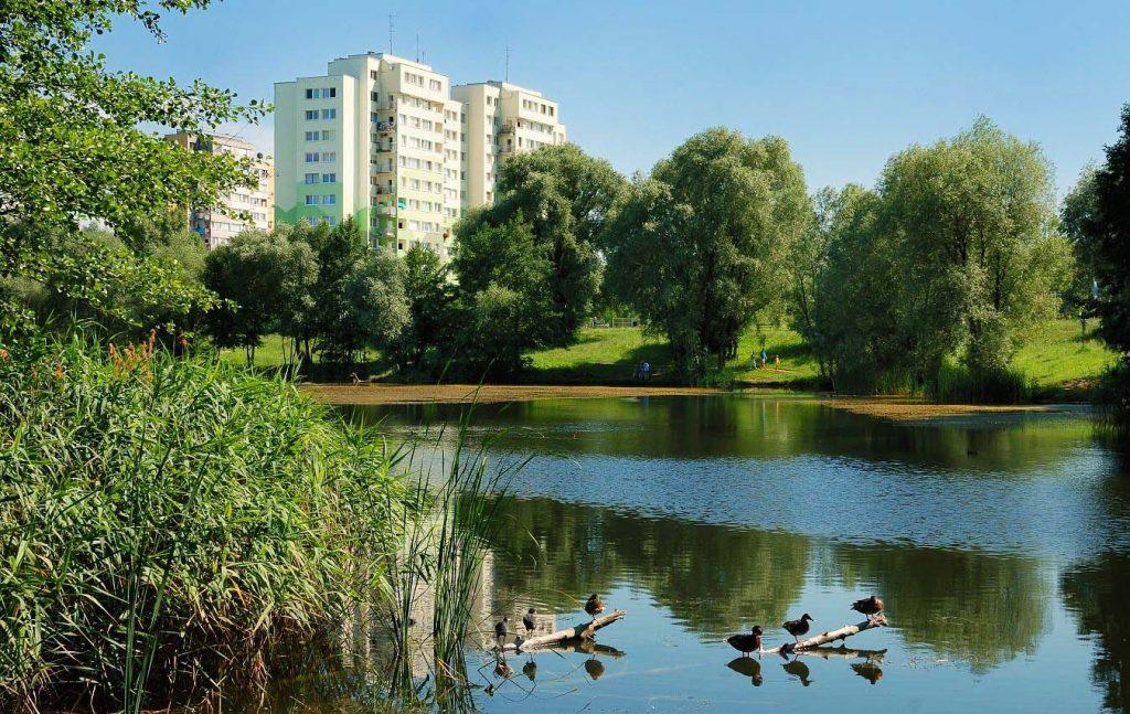 Staw Pilczycki to popularne miejsce spacerowe wśród mieszkańców Wrocławia