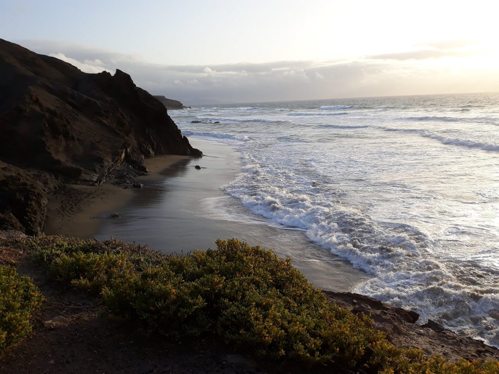 wycieczki fuerteventura